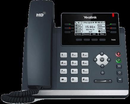 Polycom VVX 300 2-Line IP Phone